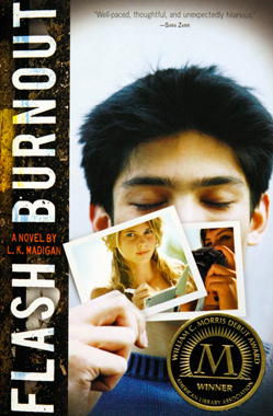 Flash Burnout Book Cover